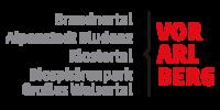 2485-uab_vbg_logo-vorarlberg-partner